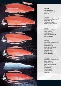 filet -guide 2